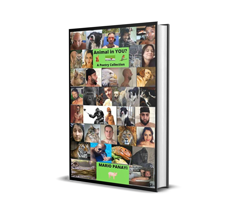 michelle-emerson-publishing
